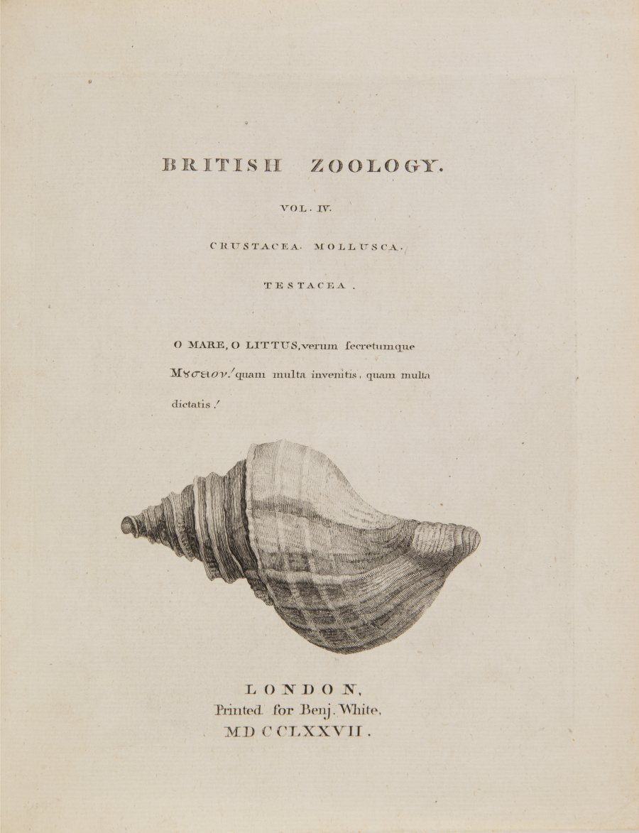 BRITISCHE ZOOLOGIE