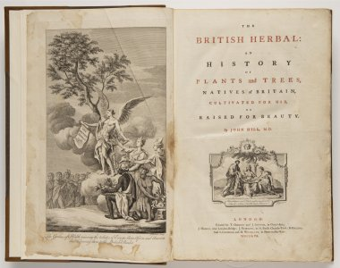 The British Herbal: An History of Plants and Trees, Natives in Britain, Cultivated for Use, or Raised for Beauty.
