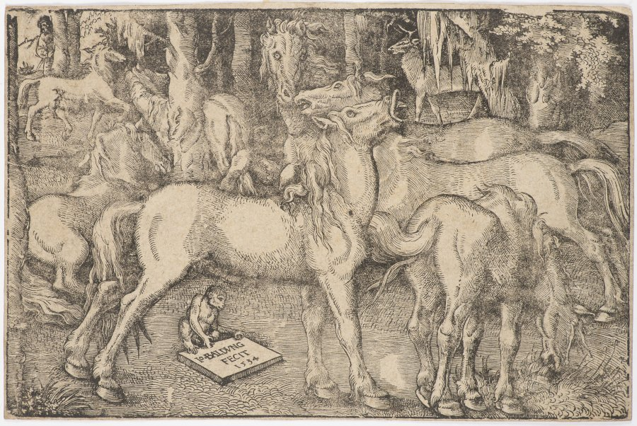 A GROUP OF SEVEN HORSES