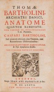 ANATOME QUARTUM RENOVATA (Anatomie, 4. Ausgabe)